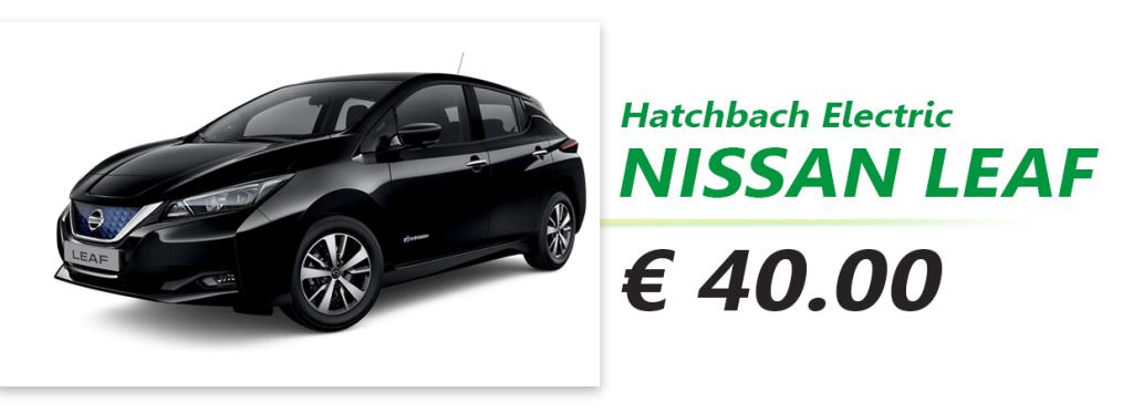 Nissan Leaf singola